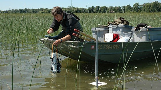 Coastal Wetland Monitoring Program scientist monitoring for water quality.