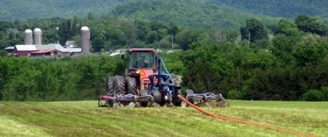 Digested manure is applied to the field as fertilizer
