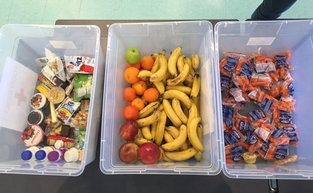 This is a picture of three clear bins filled with fruit, vegetables, yogurt, milk and other extra food.