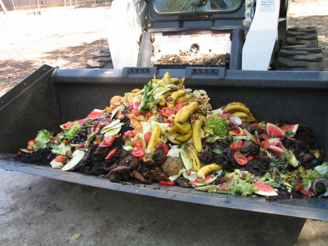 this is a picture of a front loader full of food waste