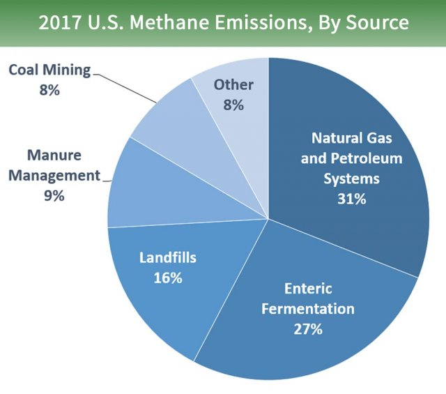 Pie chart of U.S. methane emissions by source. 31% is from natural gas and petroleum systems, 27% is from enteric fermentation, 16% is from landfills, 9% is from manure management, 8% is from coal mining, and 8% is from other sources.