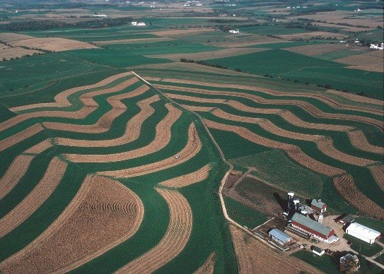 Contour strip farming