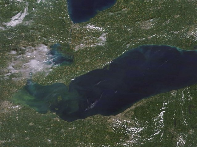 Lake Erie harmful algal bloom