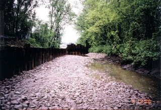 [May 19, 2000] Cell F-1: South side of river looking upstream (East); Restoration complete.