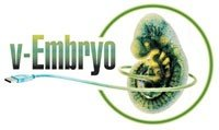 Virtual Embryo logo