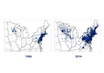 Side-by-side maps of the Northeast and Upper Midwest in 1996 and 2014, showing a dot for every reported case of Lyme disease.