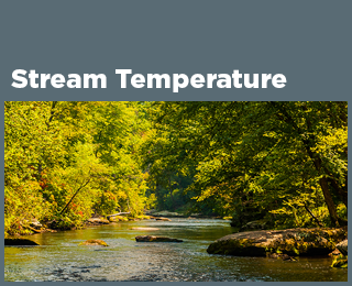 Stream Water Temperature