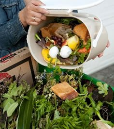 Collecting food waste