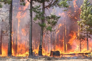 Stock photo of a wildfire - modeling emissions from wildland fires is an area of ongoing research in CMAQ