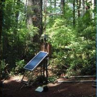 Meteorological station in closed-canopy forest stand.