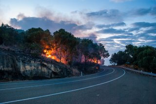 wildfire near roadway