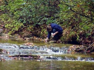 An EPA scientist testing the acidity of a stream (2004).