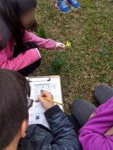 Ecosystem Services kids outdoor activity