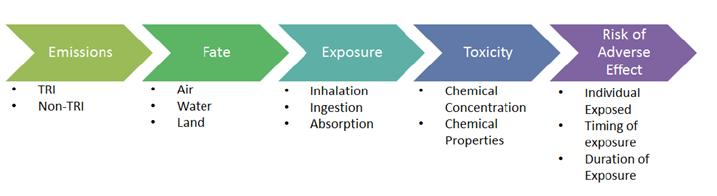 Key factors that influence risk include chemical, exposure, and toxicity